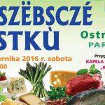 Weekend na Kaszubach: 1-2 października 2016 r.