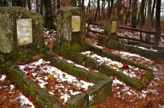 Groby w Leźnie