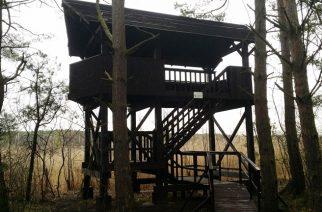 wieża widokowa w Ptasim Raju