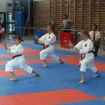 Karate w Żukowie: Gokken Chwaszczyno zorganizował dwa turnieje [ZDJĘCIA]