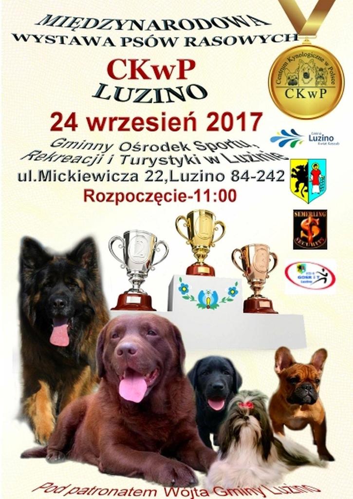 Międzynarodowa Wystawa Psów Rasowych w Luzinie