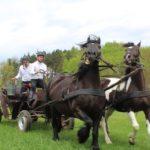 Gmina Somonino przyznała dotacje dla organizacji pozarządowych na 2019 rok! [WYKAZ]