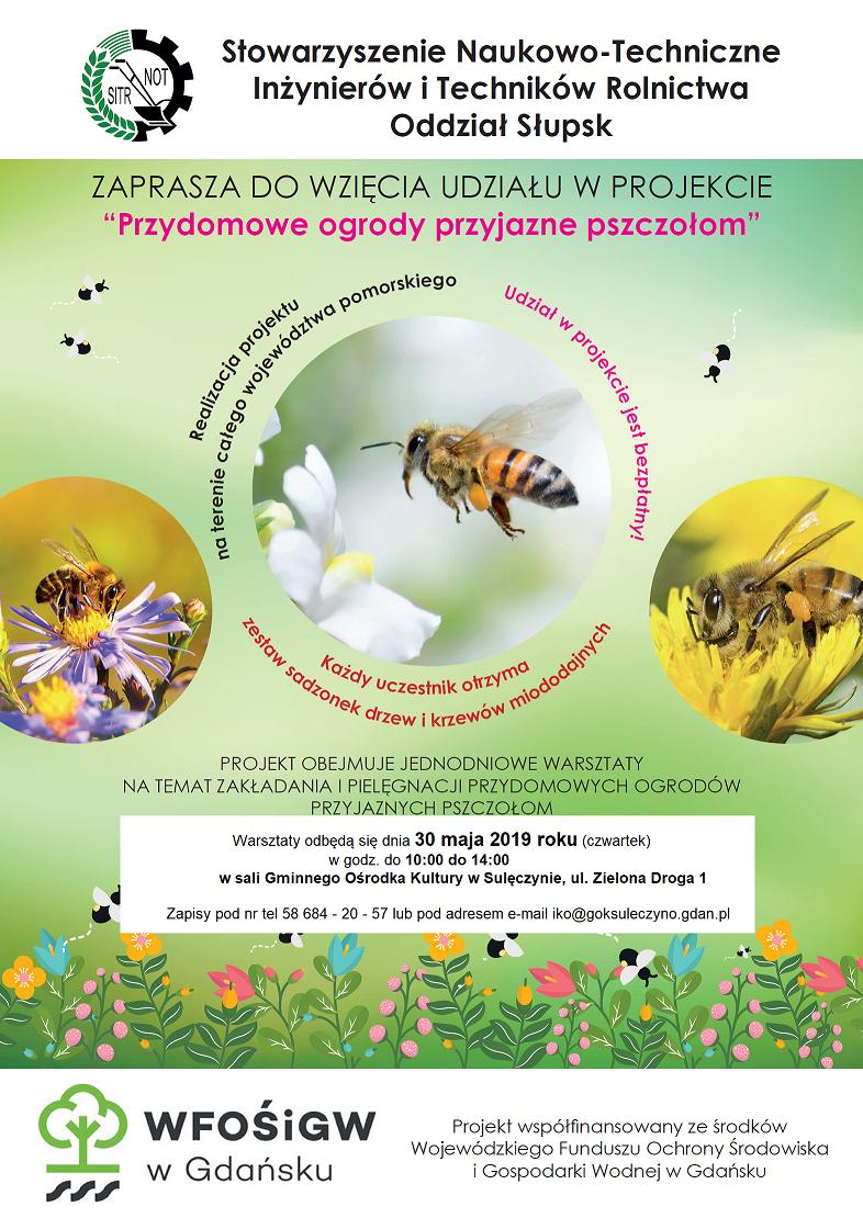 """Warsztaty """"Przydomowe ogrody przyjazne pszczołom"""" w Sulęczynie"""